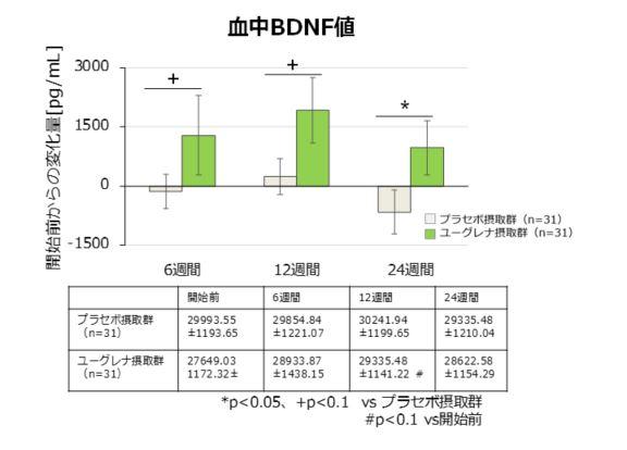 血中BDNF値グラフ