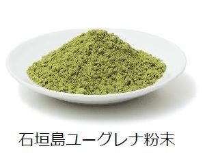 wordpress用石垣島ユーグレナ