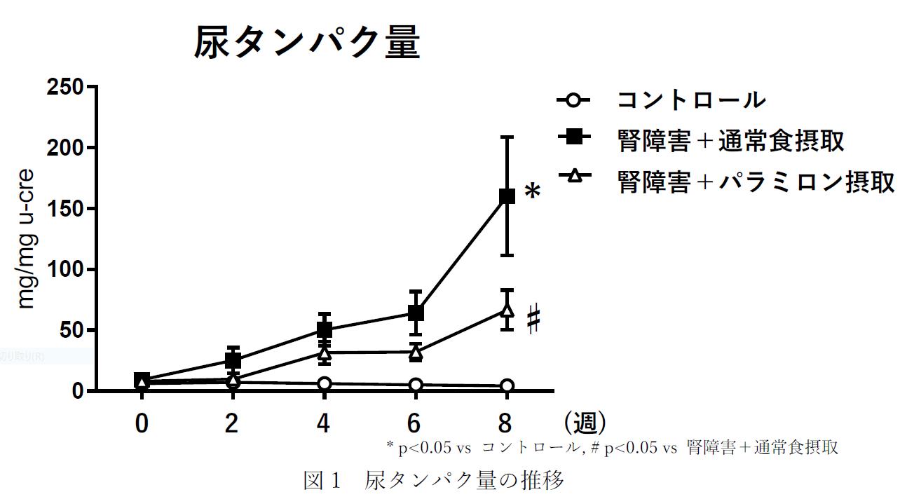 図1 尿タンパク量の推移