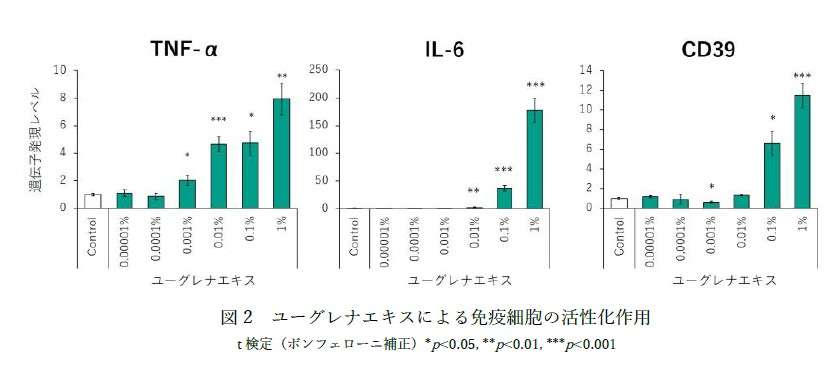 wordpress用図2