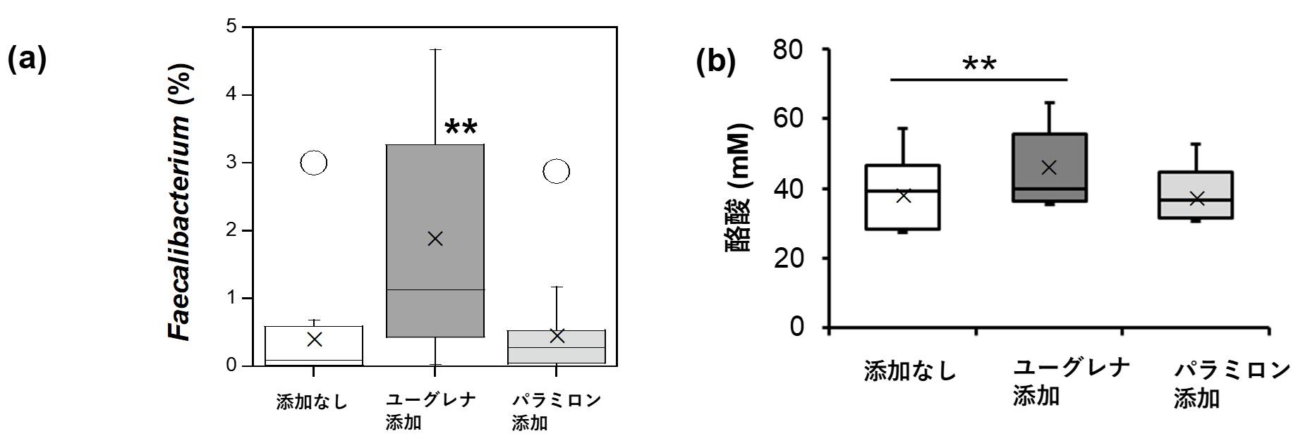 図(キャプチャ無し)