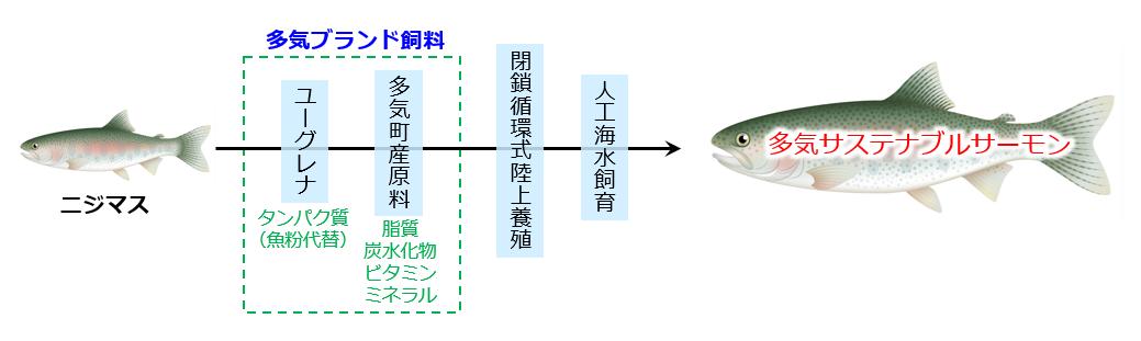 多気サステナブルサーモンの養殖